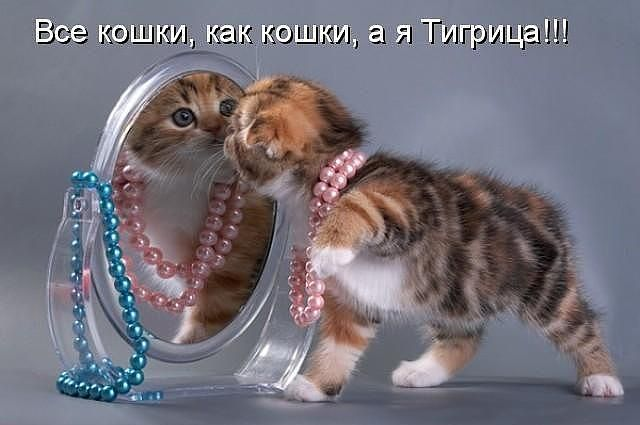 http://www.gorod-ershov.ru/_fr/0/0548228.jpg